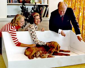 Susan, Betty und Präsident Gerald Ford mit Liberty und ihren Welpen im Weißen Haus 1975