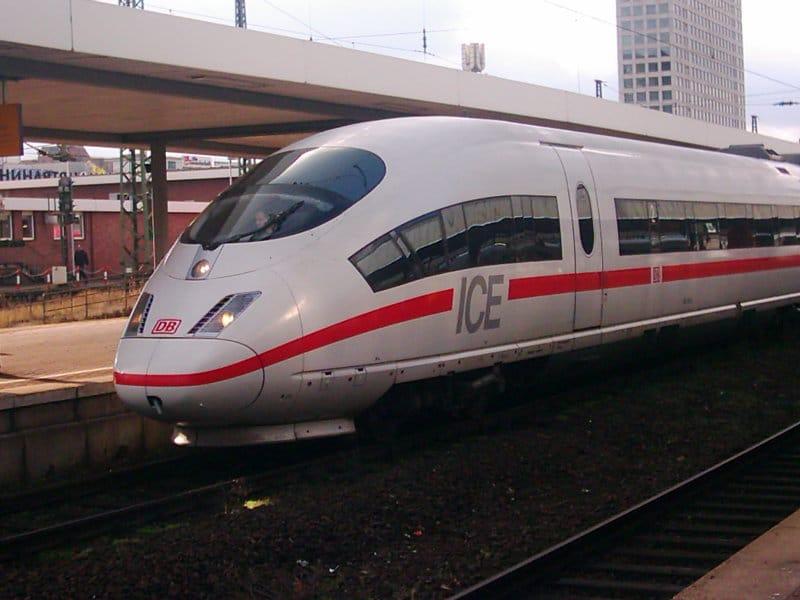 Golden Retriever Zug Fahrt Urlaub