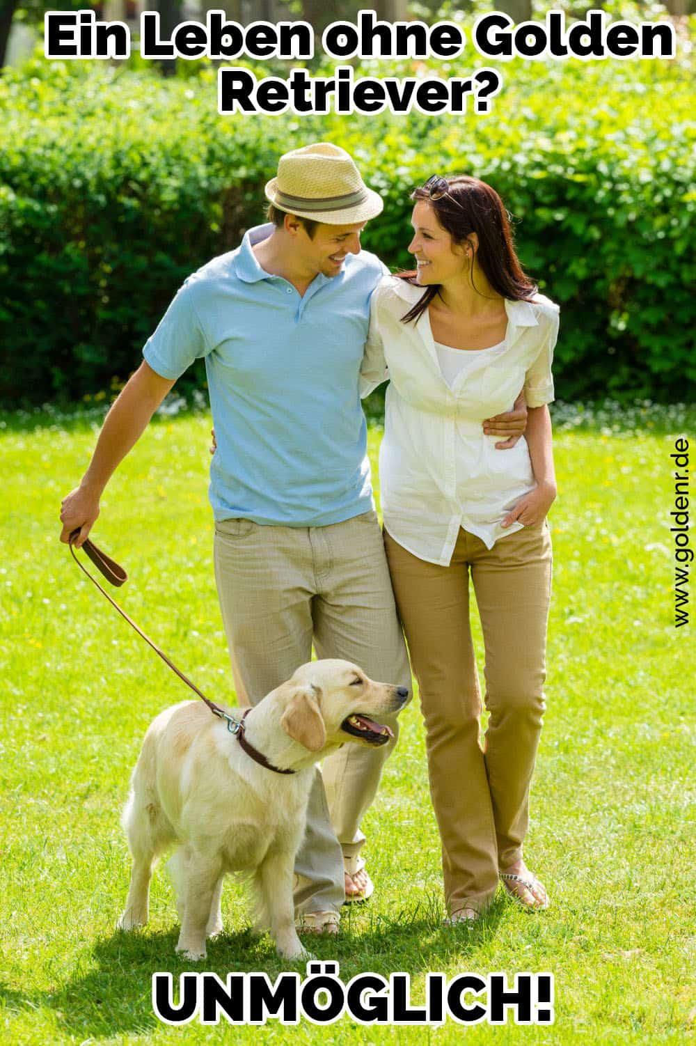 Ein Paar geht ihr Golden Retriever